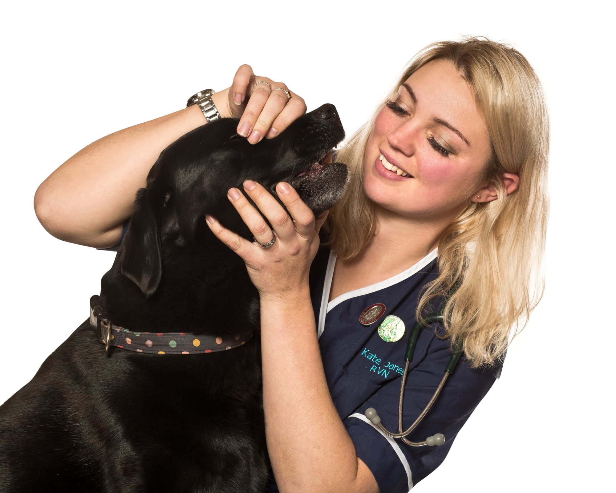 What does a Veterinary Nurse do and how do I become one?